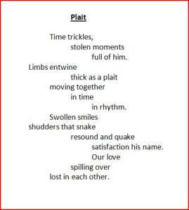 Plait poem